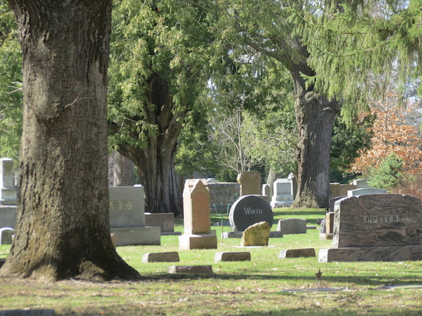 A few interesting headstones in the Blue Earth Cemetery.