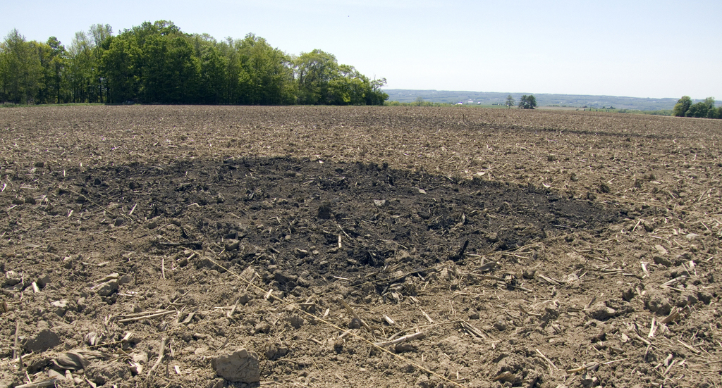 In this test plot of biochar, carbon is amended to the soil - where it stays - where it can be used as a fertilization substitute for crops. (photo: Charles Hyland/Provided)