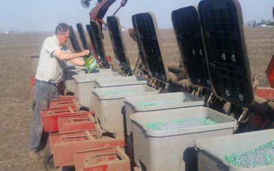Filling Planter Boxes and Checking Seed Levels Just Got Easier
